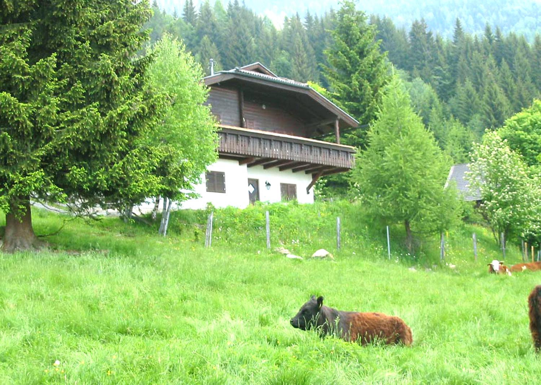 Wildhaber Hütte